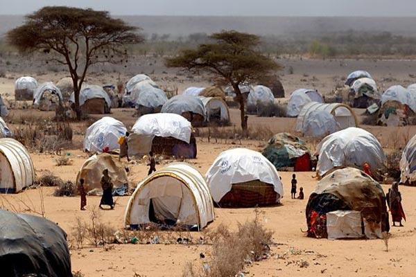 داداب... المأساة الإنسانية الصعبة