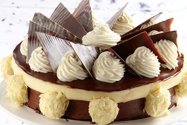 كعكة موس الشوكولا والفانيليا