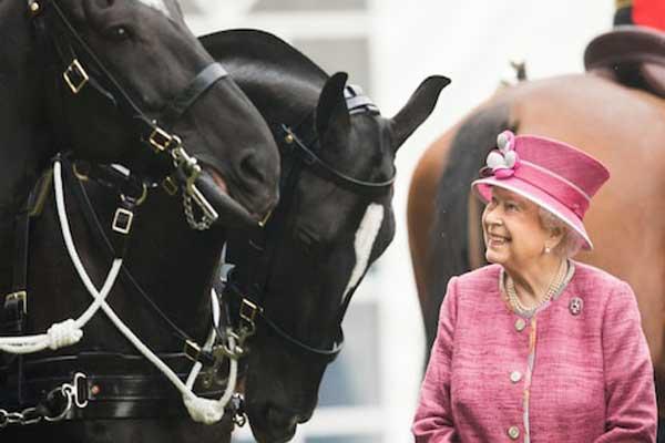 كان العام الماضي قياسيًا في جني خيول الملكة البريطانية بجوائز مالية