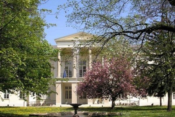 قطر تشتري قصرًا فرنسيًا شهيرًا في النمسا