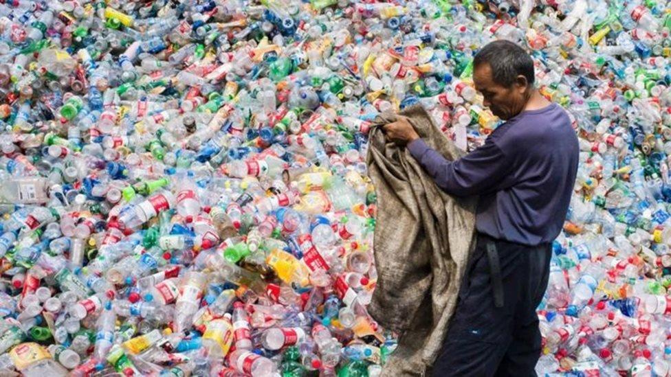 تواجه الحياة البحرية ضررا واسعا من جراء النفايات البلاستيكية التي تنتهي في البحار والمحيطات