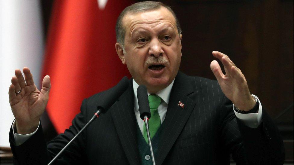 أردوغان: عملية عفرين ستتم بمشاركة مقاتلين من سوريا