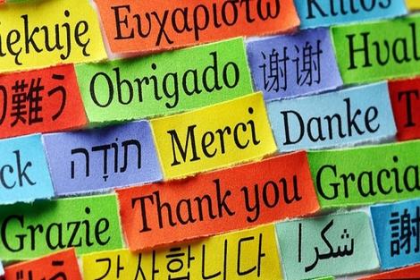 كيف تقاوم اللغات لتبقى.. في عصر العولمة؟