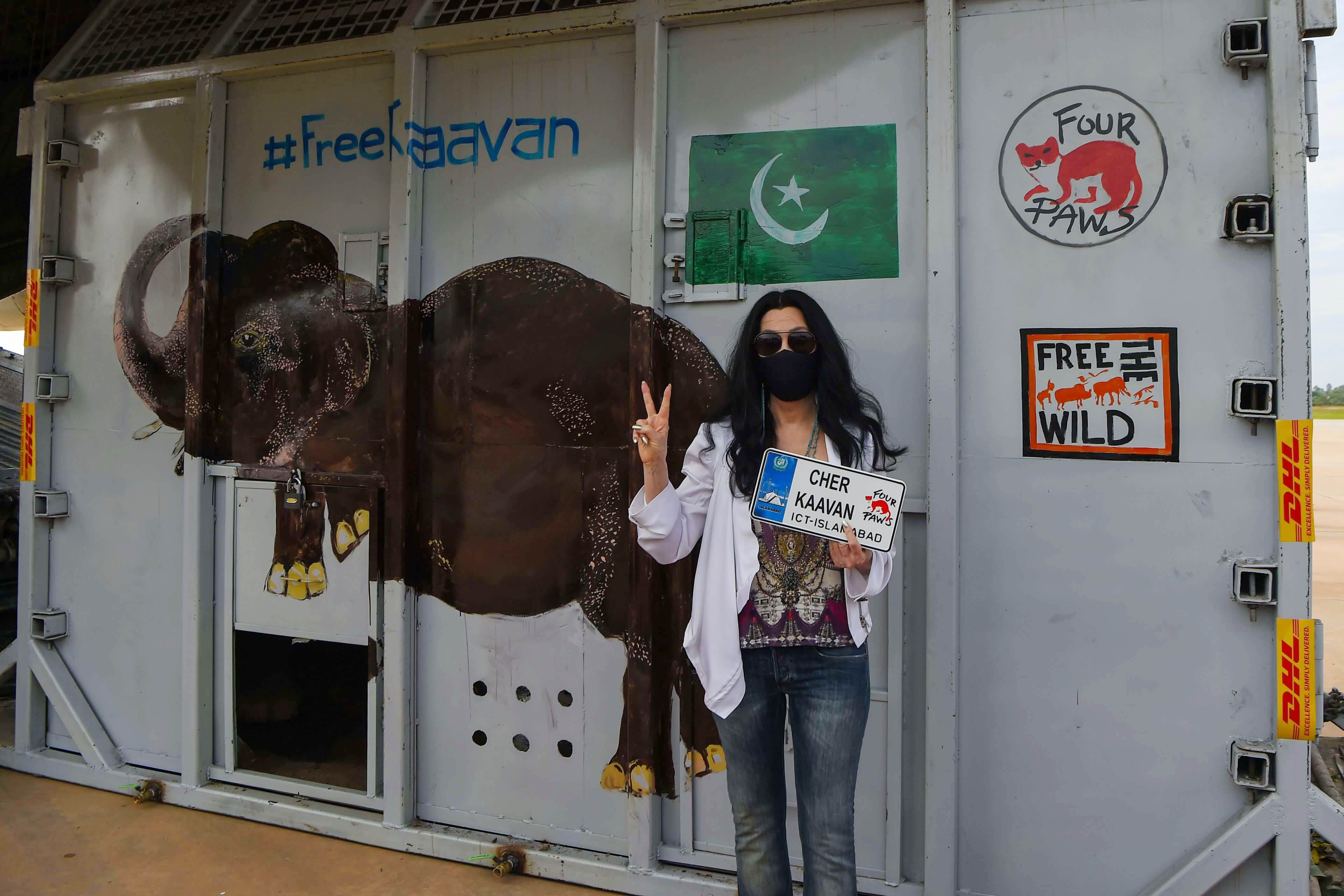 المغنية شير تستقبل الفيل كافان في كمبوديا بعد إنقاذه من باكستان