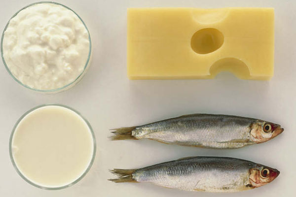 أنواع من السمك والجبن