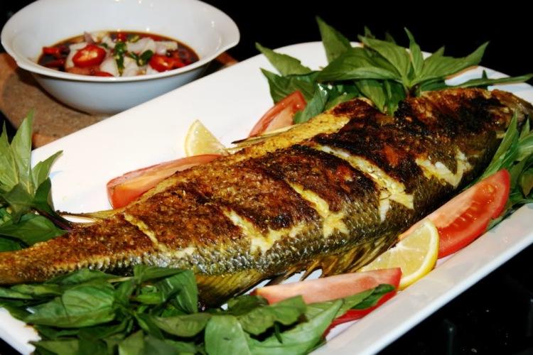 المأكولات البحرية التي يتم تناولها من المحيط الهادئ مشبعة بعناصر مشعّة تسبب السرطان