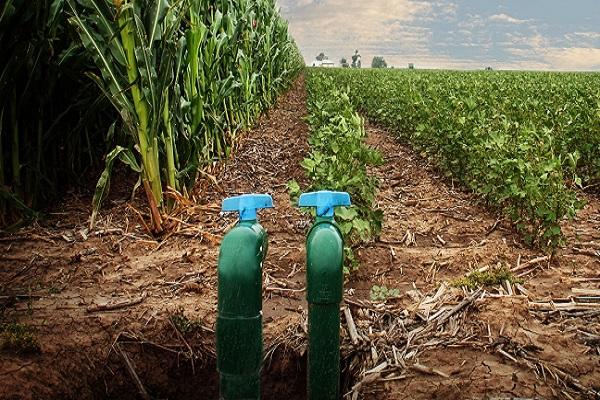 تحذيرات من استخدام المضادات الحيوية في الزراعة