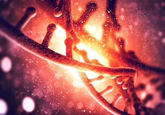 علماء يزيلون مرضاً وراثياً من جنين بتعديل حمضه النووي