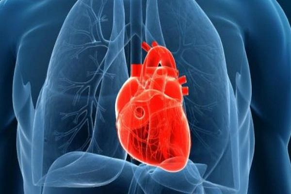 جهاز يمكن ان ينقذ ملايين المصابين بمرض صمام القلب