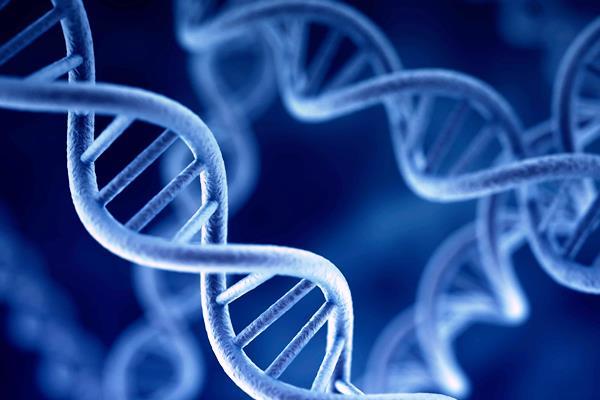 سر خفض الوزن والاقلاع عن التدخين لا يكمن في النظام الغذائي إنما في DNA