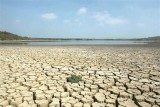 تقرير يحذر من خطر انهيار الحضارة الإنسانية عام 2050