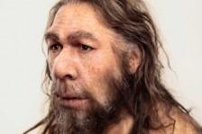 اكتساب الإنسان العاقل لقدر من الحمض النووي لإنسان النيندرتال كان لعنة عليه