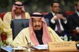 الملك سلمان مخاطبا قمة العرب والأوروبيين في شرم الشيخ