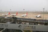 عُمان تعلّق تشغيل طائرات بوينغ 737 ماكس من وإلى جميع مطاراتها