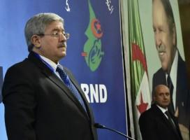رئيس الوزراء الجزائري أحمد اويحيى في الجزائر العاصمة في 31 يناير 2019