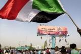 مصر ترسل 25 طنا من الأدوية دعما للسودان