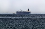 الإمارات تتطلع لنتائج حيادية في التحقيق بواقعة السفن