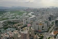 مدينة شنغن الصينية تحظر تناول الكلاب والقطط