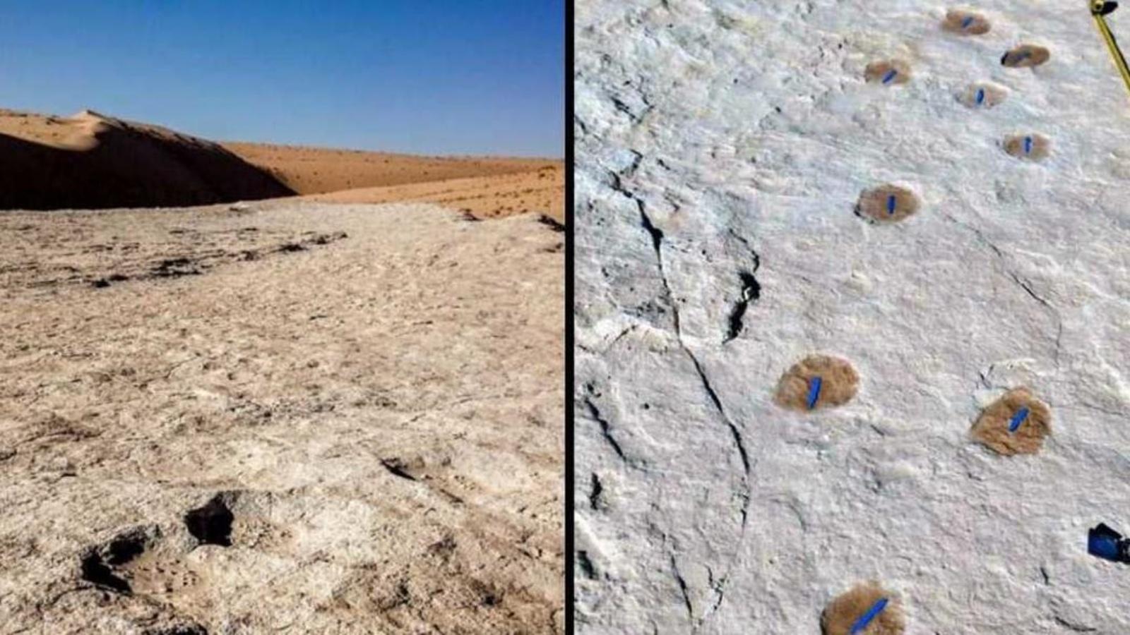 السعودية نيوز |  السعودية: اكتشاف أثري لبشر وحيوانات يعود لـ 120ألف سنة
