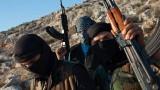 تونس: صراع بين «القاعدة» و«داعش» على استقطاب ما تبقى من «إرهابيي الجبال»