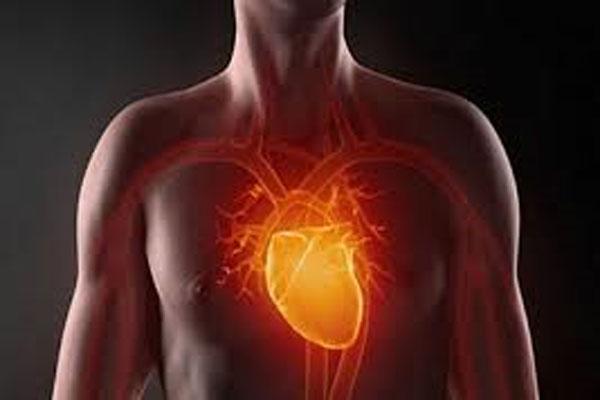 قلب اصطناعي أكثر مقاومة وصمودا