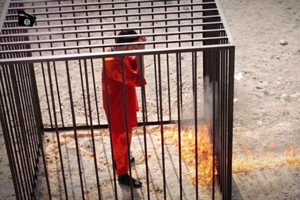 الطيار الكساسبة في قفص داعش الإجرامي