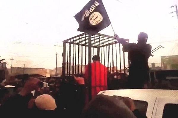 داعش يعرض احد الجنود في القفص