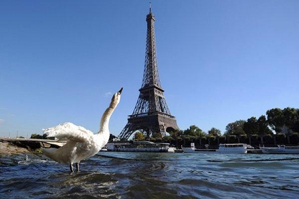 برج ايفل احد معالم باريس المشهورة