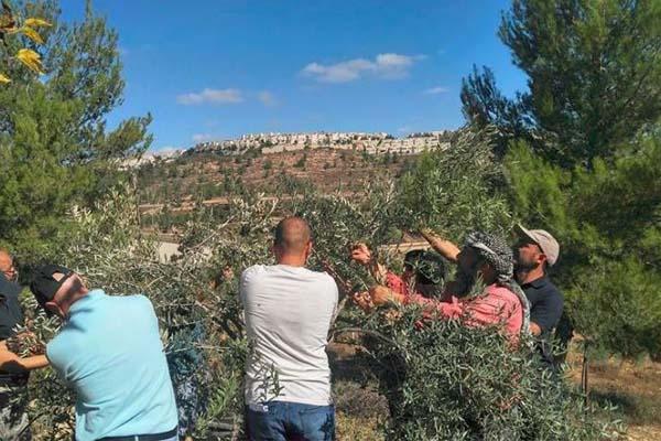 بريطانيا: ندعم حق الفلسطينيين للوصول إلى أراضيهم