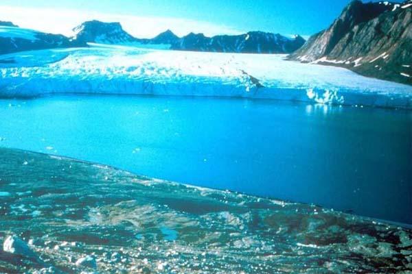 الجليد سيختفي في القطب الشمالي