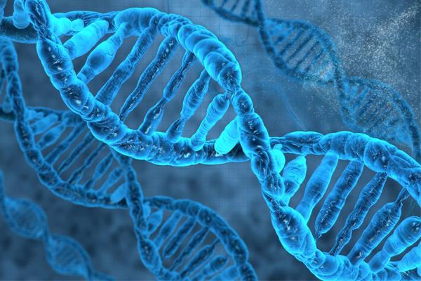 توسيع الأبجدية الوراثية خطوة نحو تخليق حياة اصطناعية