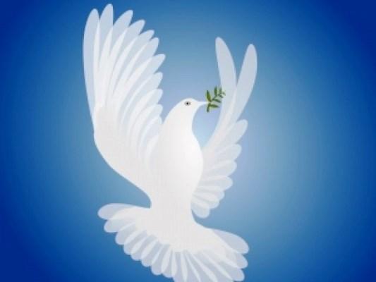 الجمعية العامة للأمم المتحدة أقرت إعلان الحق في السلام يوم 19 ديسمبر 2016