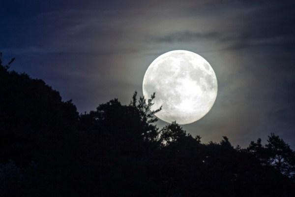 خطط لوضع لوحة إعلانية على سطح القمر