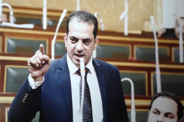 وفد مصري يزور المفاعلات النووية الروسية