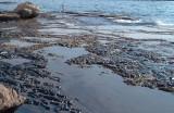 الكويت تكافح لسحب بقع نفطية متسربة جنوب مياهها الاقليمية
