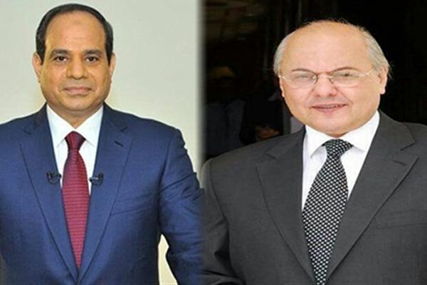 المصريون يختارون ما بين السيسي وموسى