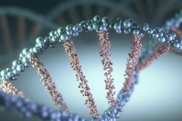 علماء يؤكدون انتقال الذاكرة من خلال الحمض النووي الخلوي