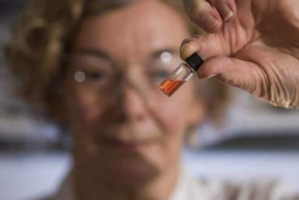 عثر العلماء على الصبغة الزهرية في عمق الصحراء الكبرى - The Australian National University