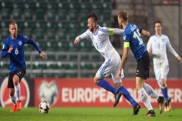 البوسني ايبيسيفيتش يعلن اعتزاله اللعب دوليا