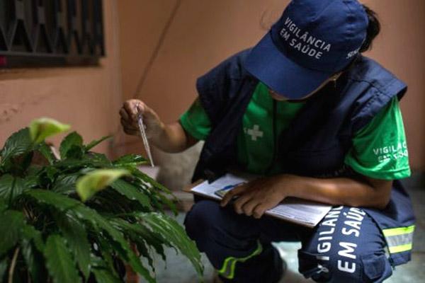 السلطات البرازيلية تقود حملة للقضاء على البعوض الذي ينقل فيروس زيكا