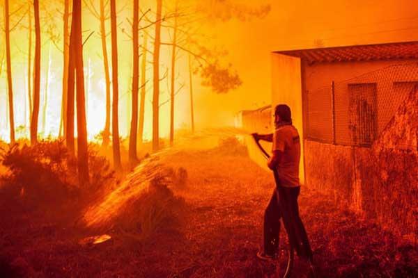 ساعد ستة آلاف من رجال الإطفاء السكان على مواجهة حرائق الغابات التي اندلعت في البرتغال في عام 2017، مما أسفر عن مقتل العشرات