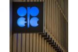 الإمارات تعلن عن اجتماع للدول النفطية في أبريل لتقييم خفض الانتاج
