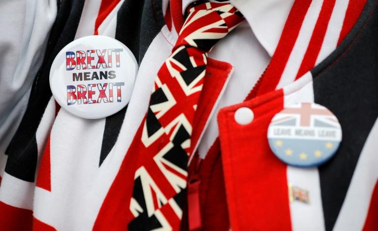 ناشط يرتدي شعارات مؤيدة لبريكست، خلال تظاهرة أمام البرلمان في لندن في 29 يناير 2019
