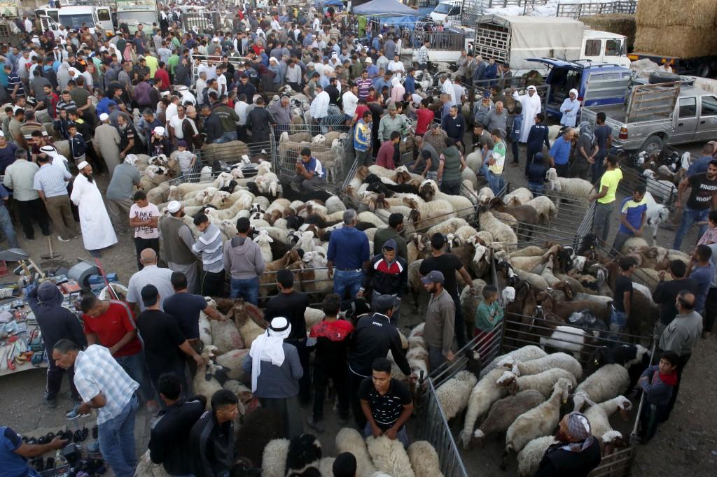 سوق لبيع الأضاحي في الضفة الغربية