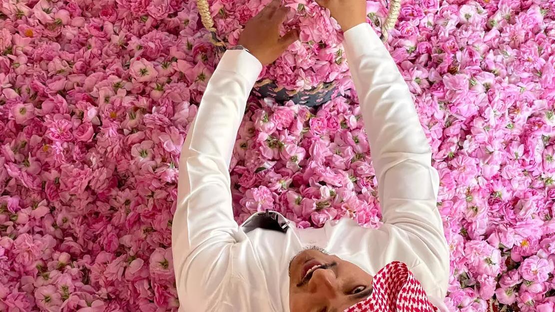 جمع الورود تحضيرا لتقطيرها