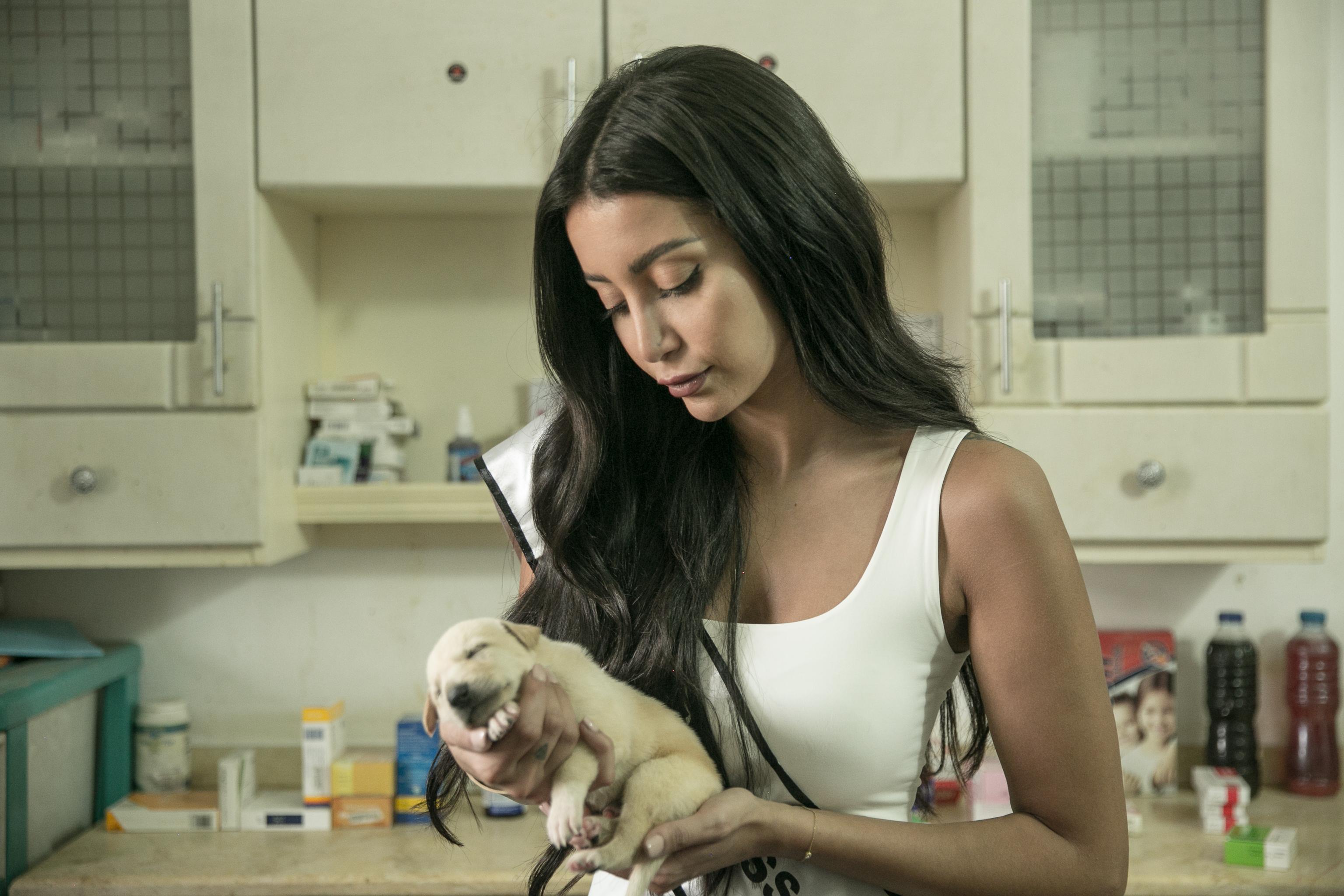 موني هلال تعمل لإنقاذ كلاب وقطط الشوارع