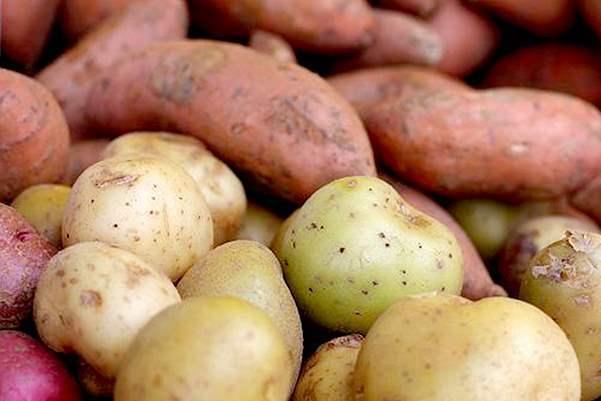 أنواع من البطاطا