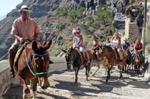 اليونان .. قرار بمنع السياح زائدي الوزن من ركوب الحمير !