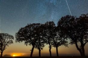 ثلث مناطق التنوع البيولوجي الأساسية تغطيها سماء نظيفة تماماً من التلوث الضوئي