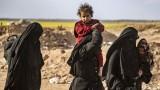 هل انتهى خطر تنظيم الدولة بعد انهيار دولة
